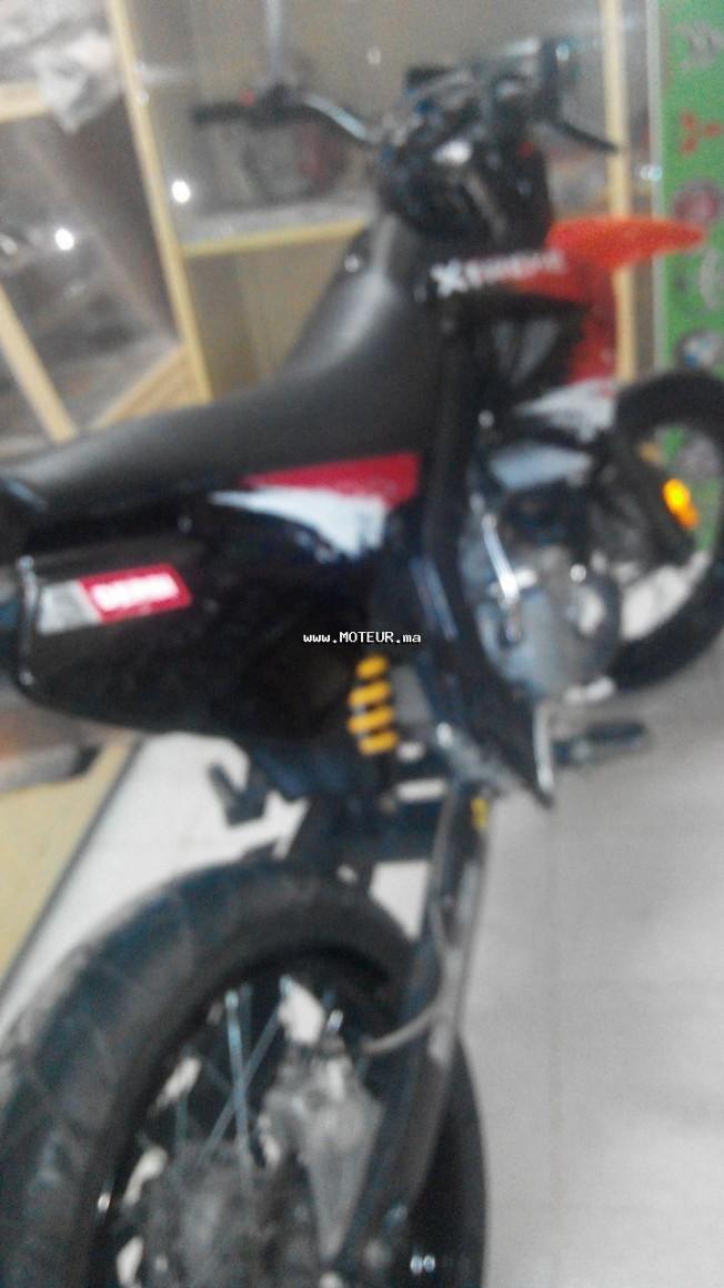 Moto au Maroc DERBI X-treme 50sm 2010 special edition - 131802