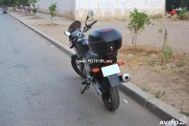 دراجة نارية في المغرب هوندا سبكس 2008 - 129606