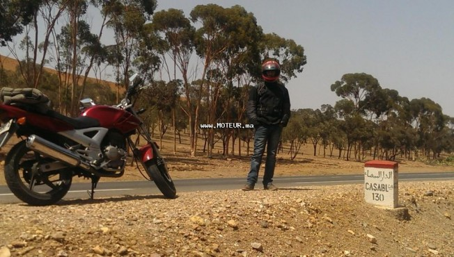 Moto au Maroc HONDA Cbx Twister cbx 250 - 131990