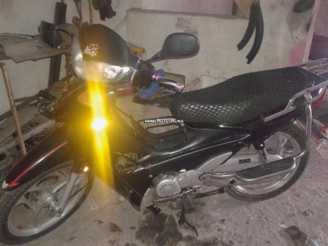 Moto au Maroc DOCKER Jialling 2012 - 133514