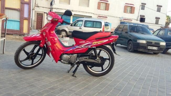 دراجة نارية في المغرب ياماها اكتيفي 110 - 132552