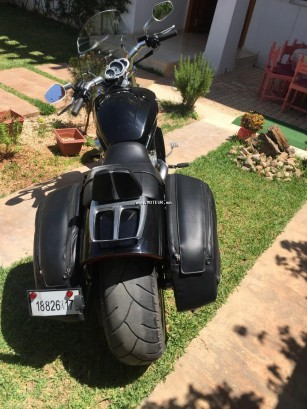 دراجة نارية في المغرب HARLEY-DAVIDSON Vrsca v-rod 1250 - 133395
