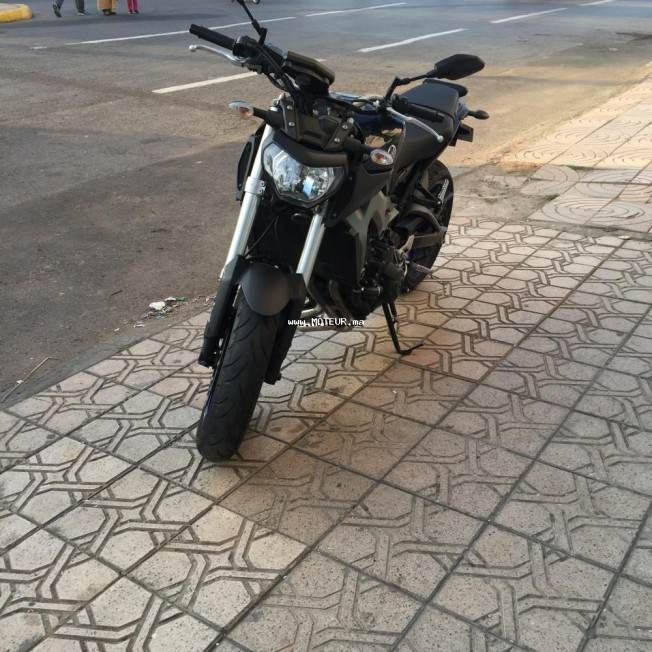 Moto au Maroc YAMAHA Mt Mt-09 race blue - 132313