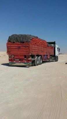 شاحنة في المغرب داف كسف 105 xf - 123108