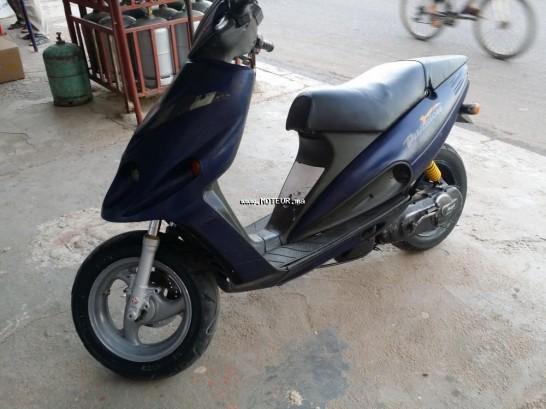 Moto au Maroc MALAGUTI Phantom 50 racing 49 - 133451