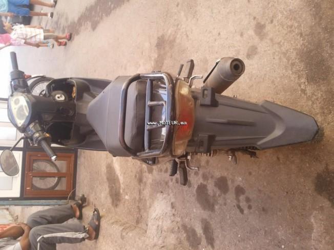 Moto au Maroc DOCKER Spider 110 - 133653