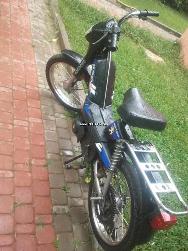 دراجة نارية في المغرب بيجو فوكس 49 - 130373
