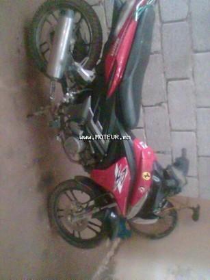 Moto au Maroc DOCKER Spider 50c - 128403