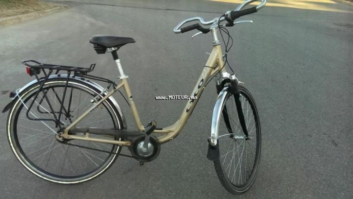 دراجة نارية في المغرب ورال لوكس - 132935