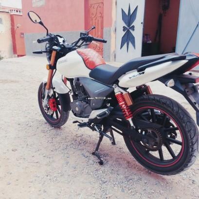 دراجة نارية في المغرب بينيلي فيلفيت 150 150v - 133298