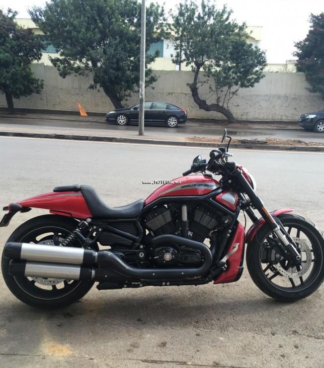 moto harley davidson vrscdx night rod spe au maroc occasion vendre. Black Bedroom Furniture Sets. Home Design Ideas