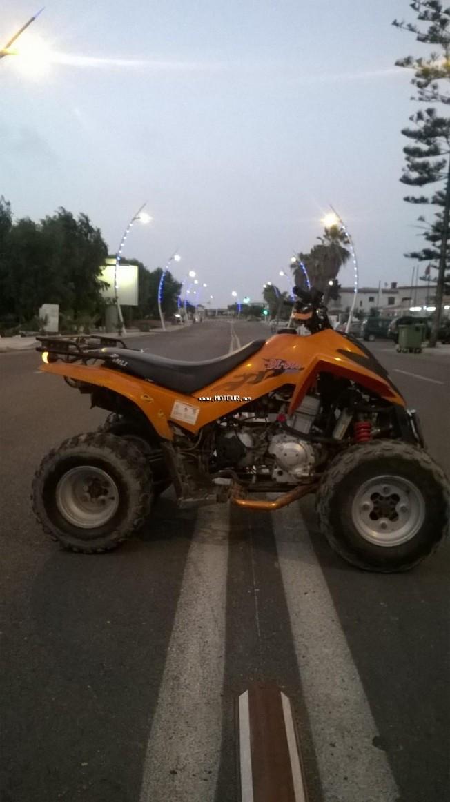 Moto au Maroc DINLI Autre 270 - 133575