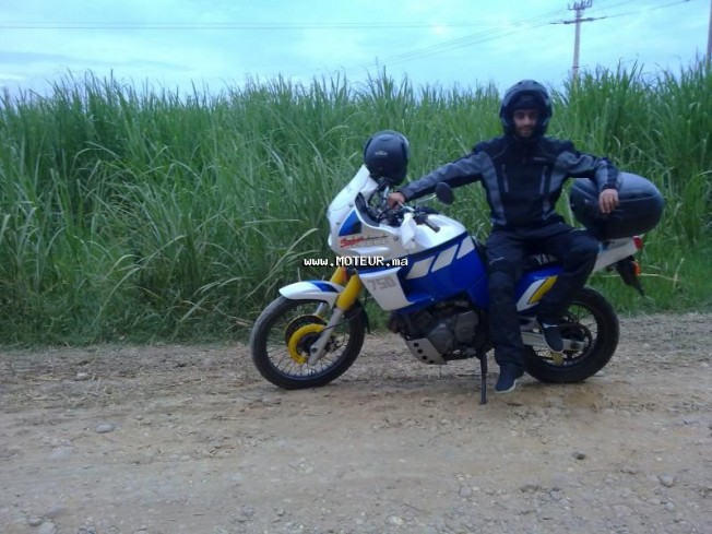 Moto au Maroc YAMAHA Xtz Super tenere - 131648