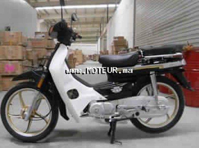 Moto au Maroc DOCKER C90 125 r - 132213