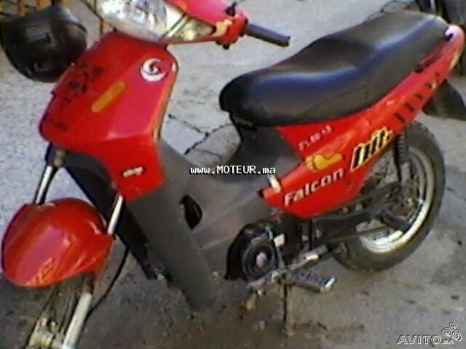 دراجة نارية في المغرب فالكون فل50 125 - 128424
