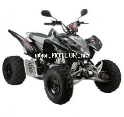 Moto au Maroc GOES G520 50 à 800 cc - 127898