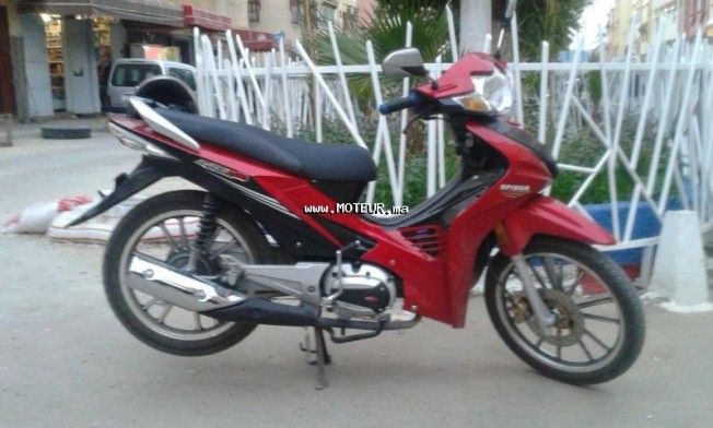 Moto au Maroc RINCO R125 - 131266