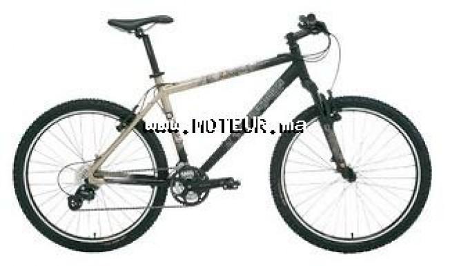 Moto au Maroc ADLY Activator 125 Fgf - 123957