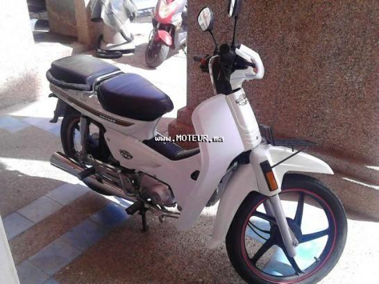 Moto au Maroc DOCKER C90 - 133872