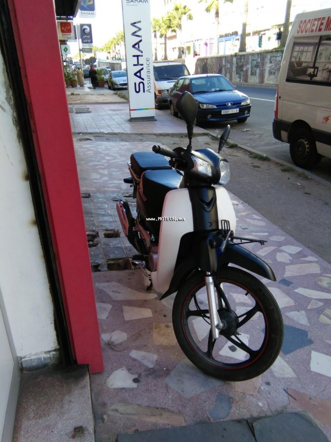 Moto au Maroc DOCKER C90 - 133447