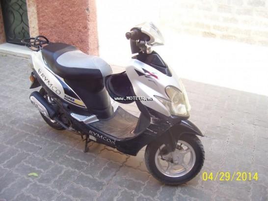 دراجة نارية في المغرب ريمكو رس50 R 50 - 130407