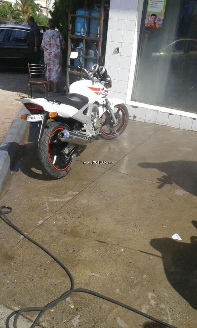 دراجة نارية في المغرب هوندا سبكس Cbx250 - 133642