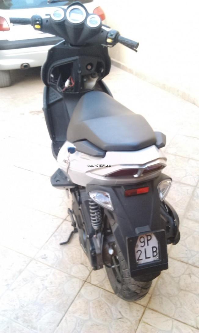 دراجة نارية في المغرب مالاجوتي بهانتوم 50 - 132109