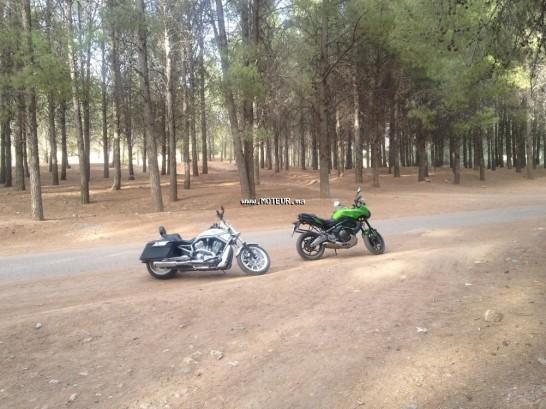 Moto au Maroc HARLEY-DAVIDSON Vrsca v-rod - 132382