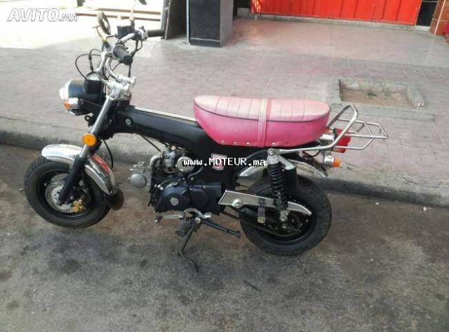 دراجة نارية في المغرب هوندا داكس 72 cc - 132567
