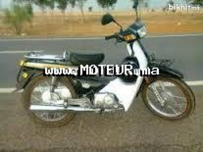 Moto au Maroc DOCKER C90 - 133749