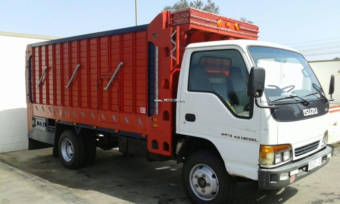 Camion au Maroc ISUZUNpr Pois lourd 5,5 tonne - 123176