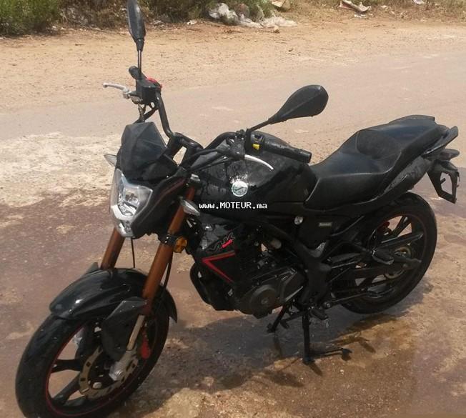 Moto au Maroc BENELLI Autre Vlk 2015 - 132165