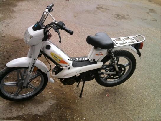 دراجة نارية في المغرب بيجو فوكس - 129899