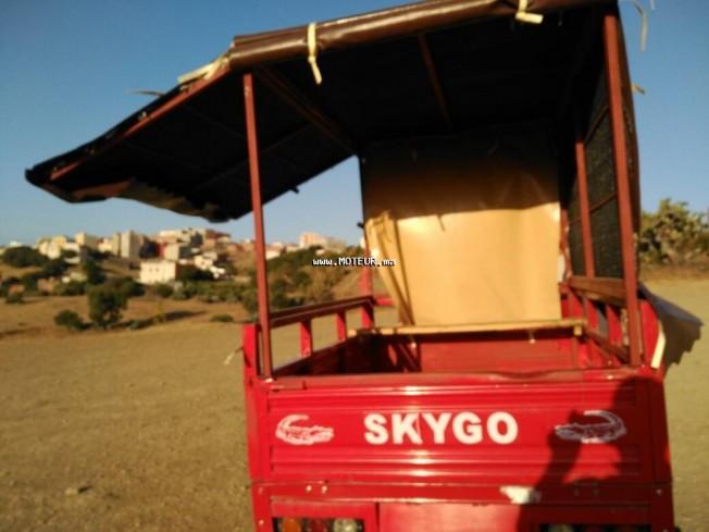 Moto au Maroc SKYGO Autre 150 - 133842