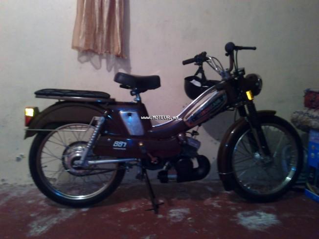 دراجة نارية في المغرب موتوبيكاني 881 - 131913