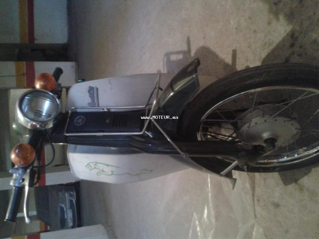 Moto au Maroc YAMAHA Autre - 133766