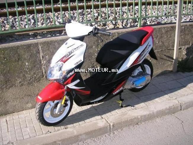 Moto au Maroc YCF 150 factory pilot 555 - 123686