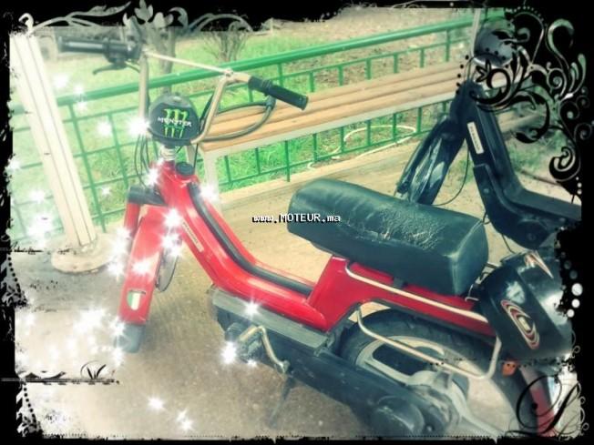 دراجة نارية في المغرب بياججيو سي 50 cc - 131487
