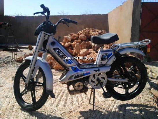 دراجة نارية في المغرب فاكتوري-بيكي اوتري - 123235