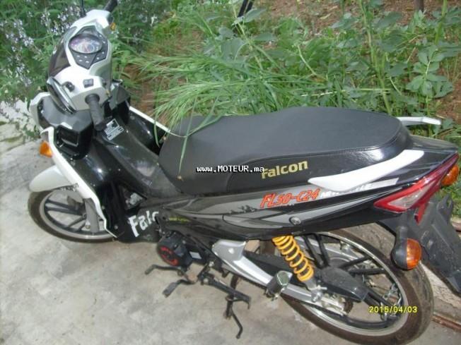 Moto au Maroc FALCON Fl50 C24 - 131619