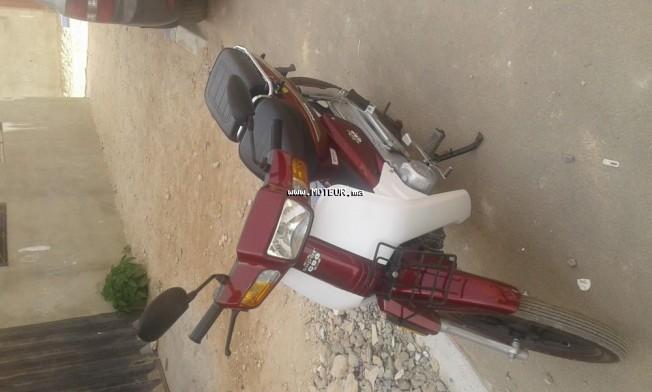 Moto au Maroc DOCKER C90 49 - 133831