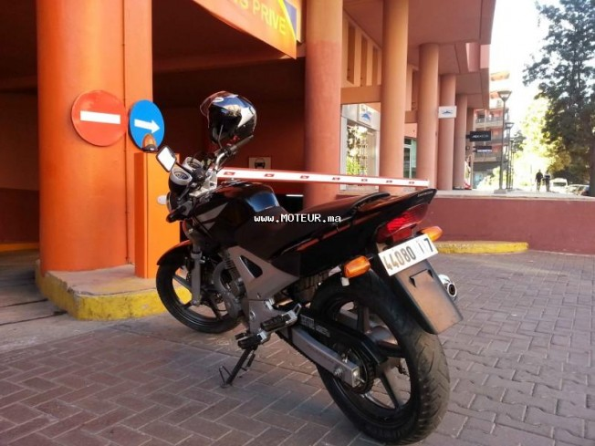 Moto au Maroc HONDA Cbx Twister cbx 250 - 131124