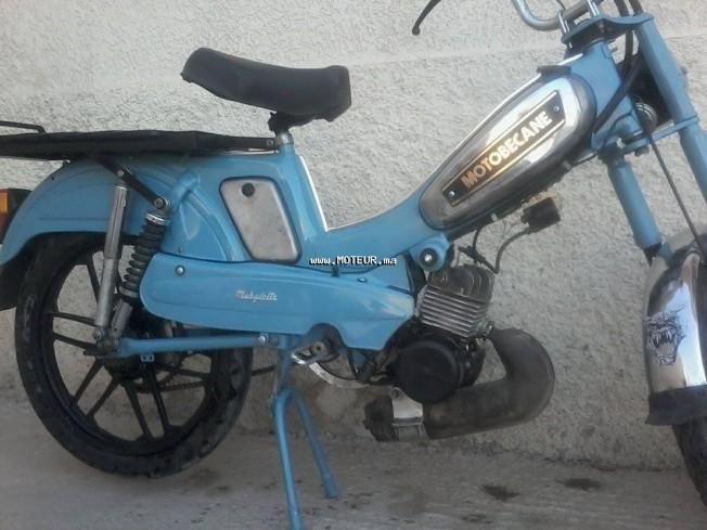 دراجة نارية في المغرب موتوبيكاني 881 - 133666