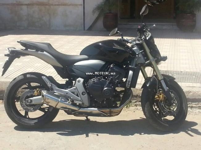دراجة نارية في المغرب هوندا هرنيت 600 - 129211