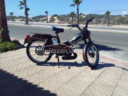 دراجة نارية في المغرب - 240616