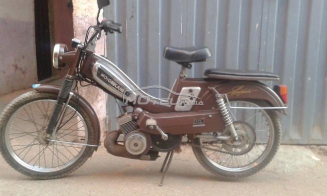 دراجة نارية في المغرب موتوبيكاني 881 - 162685