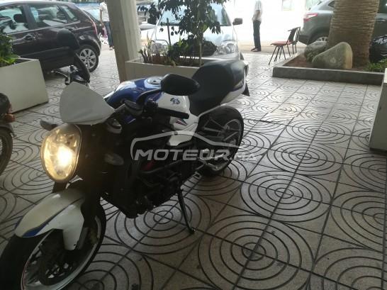 دراجة نارية في المغرب - 240407