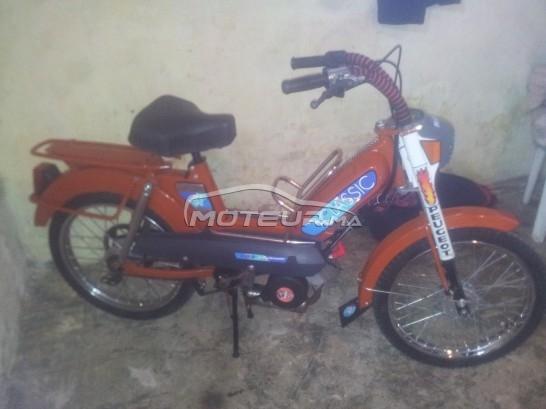 دراجة نارية في المغرب 103sp - 238686