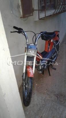 Moto au Maroc PEUGEOT 103 - 245204