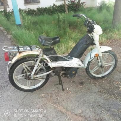 دراجة نارية في المغرب PEUGEOT Fox - 316640